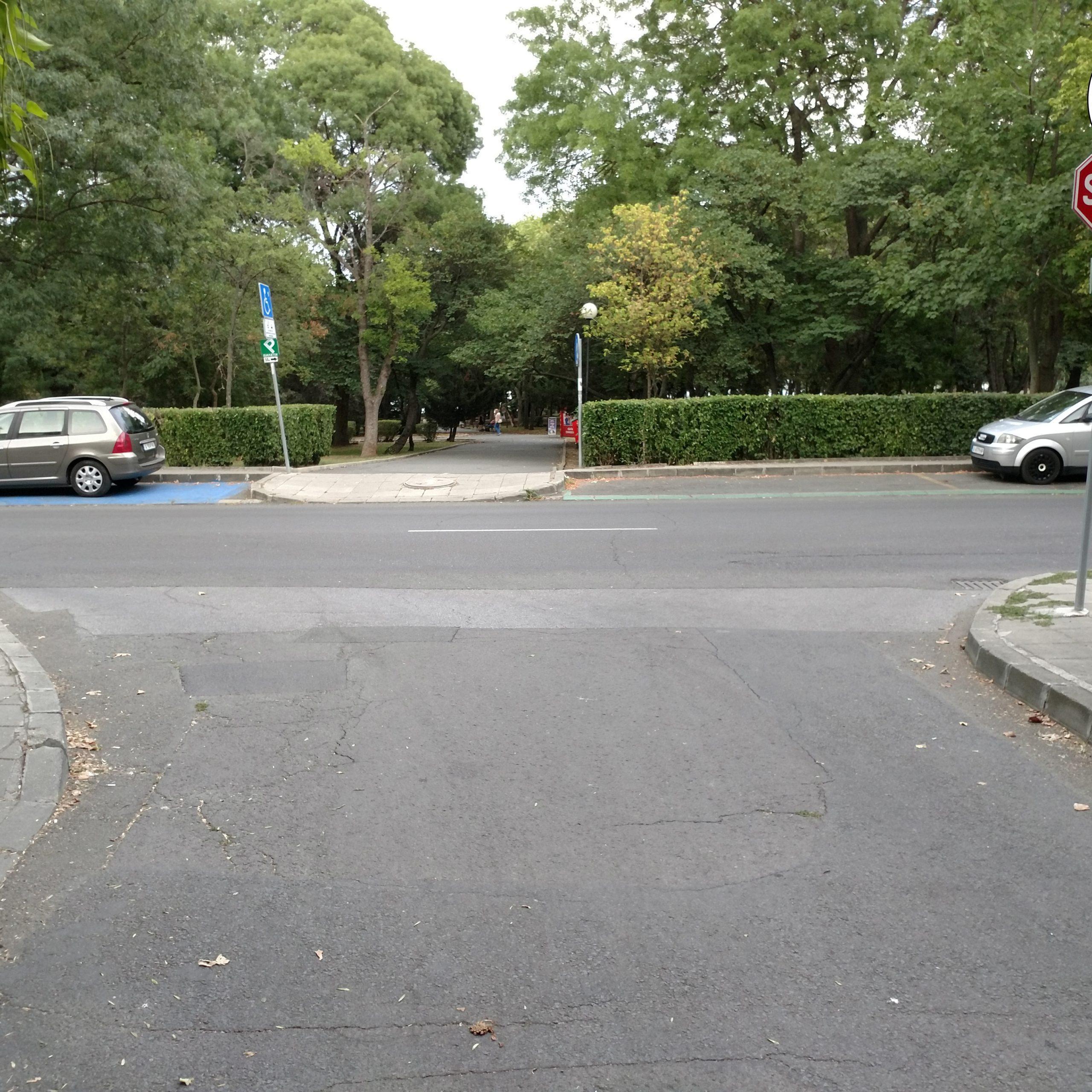 Искане за пешеходна пътека