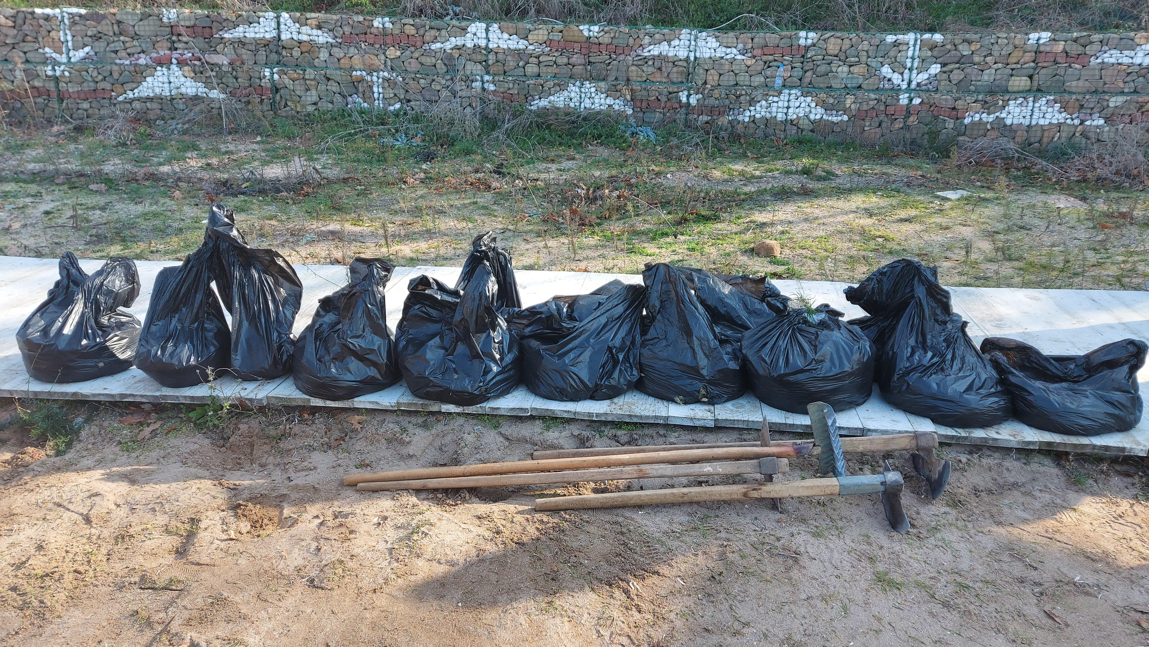 """Почистване на тревата от плажа в """"Росенец"""""""