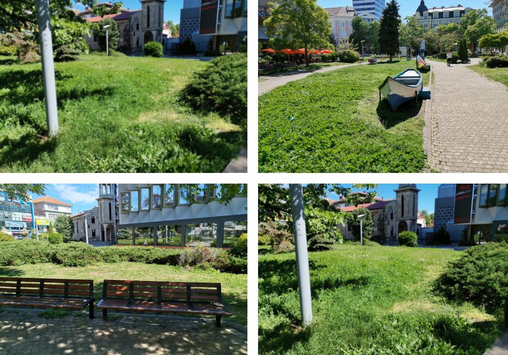 """Предложение за засаждане на дървета в градинката до хотел """"България"""""""